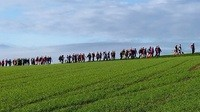 Frankenwald-Marathon Helmbrechts