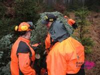 Weihnachtsbaum08.JPG